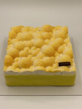 Biscuit Vaucluse de 15 à 50 pers